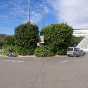 Cs reclama que se poden los árboles de la semi-rotonda del puente del Reina Sofía para mejorar la visibilidad, la seguridad vial y evitar accidentes en la zona